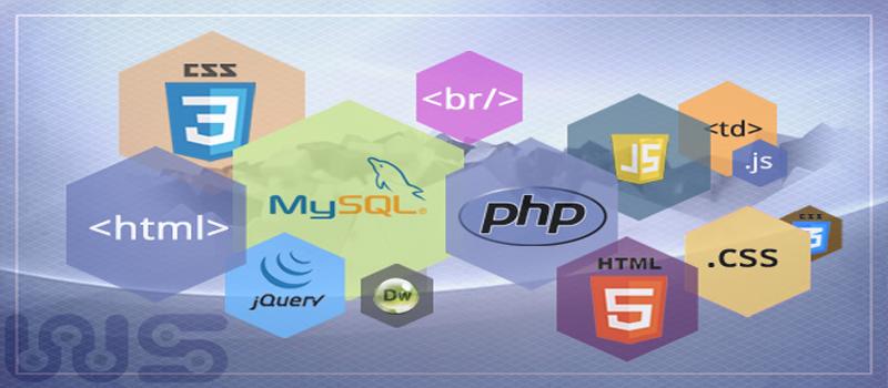Website Design and Development Portfolios